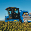 New Holland: in campo le vendemmiatrici semoventi Braud 9000L