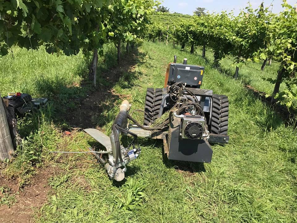 Willtec: trattori e transporter cingolati per la viticoltura