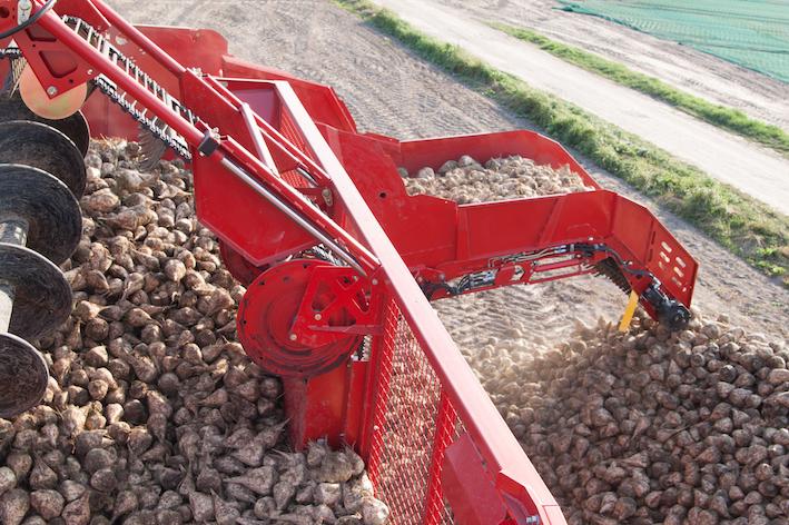 Grimme: novità per la raccolta di barbabietole e patate