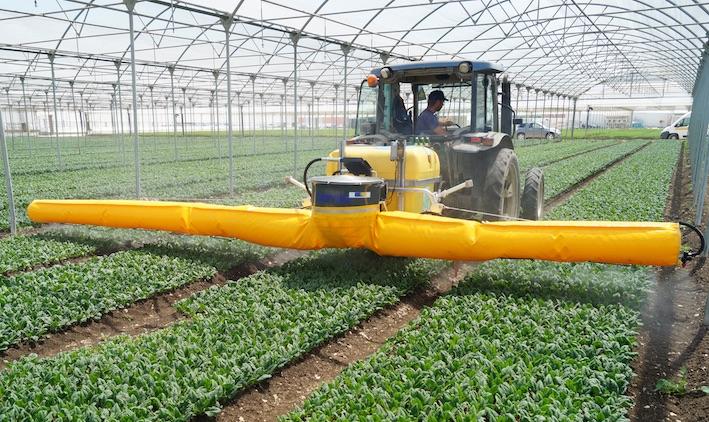 Caffini: nuovo polverizzatore Spray Veg, per le colture orticole della IV gamma