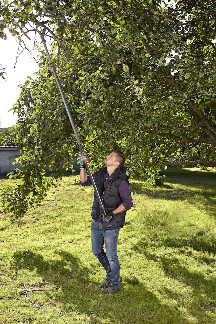 Gardena: nuove lance troncarami Starcut, per arrivare dappertutto