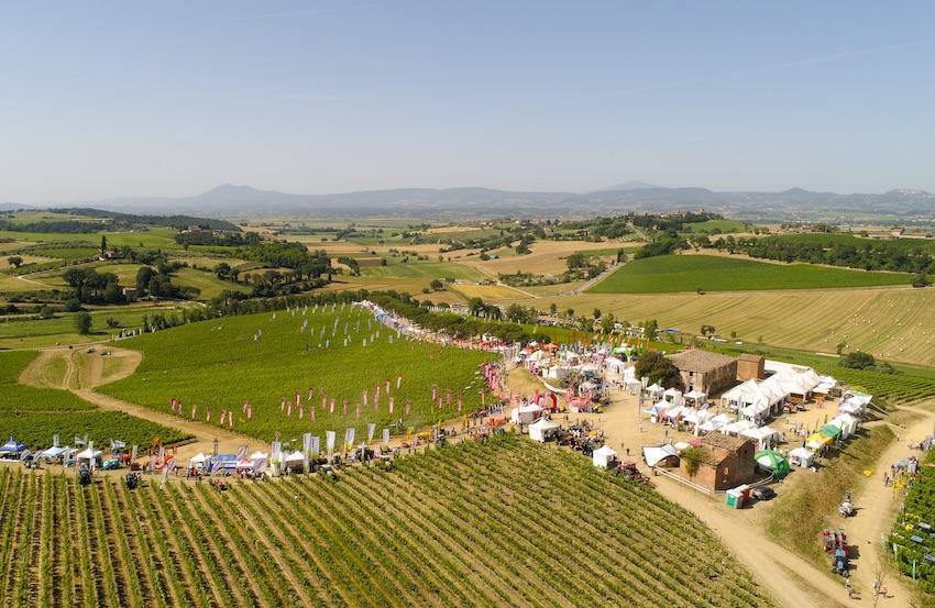 Enovitis in Campo: archiviata, con un buon bilancio, l'edizione toscana, ci si sposta in Piemonte