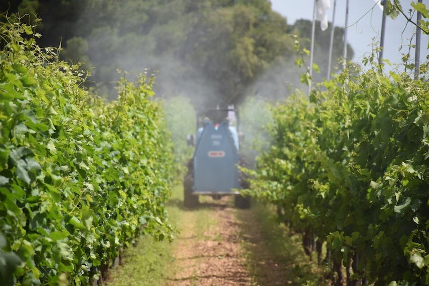 Carburante agevolato: 60 per cento in più per gli agricoltori pugliesi