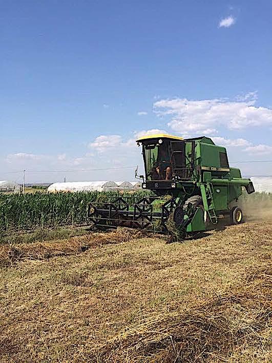 Albania: esenzione dell'IVA per incentivare la meccanizzazione agricola
