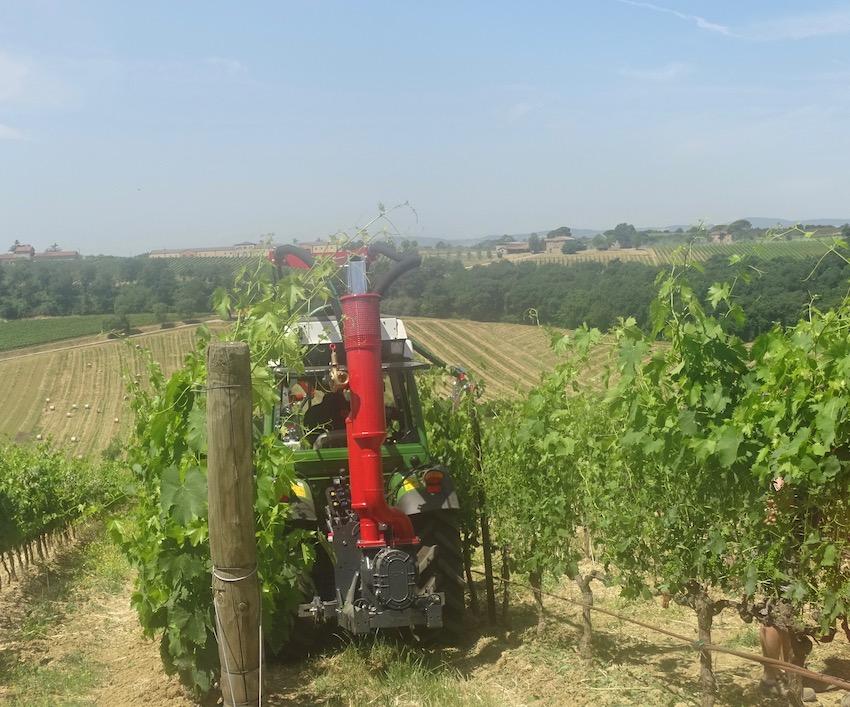 Enovitis in Campo 2020: appuntamento il 18 e 19 giugno nel Monferrato, nei vigneti di Pico Maccario