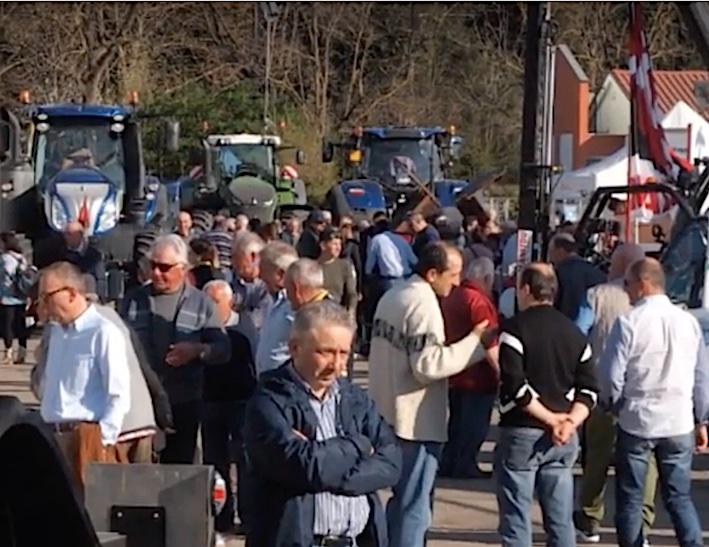 Fiera di Faenza: doppio appuntamento con Mostra Agricoltura e Momevi, dal 20 al 22 marzo – ANNULLATA