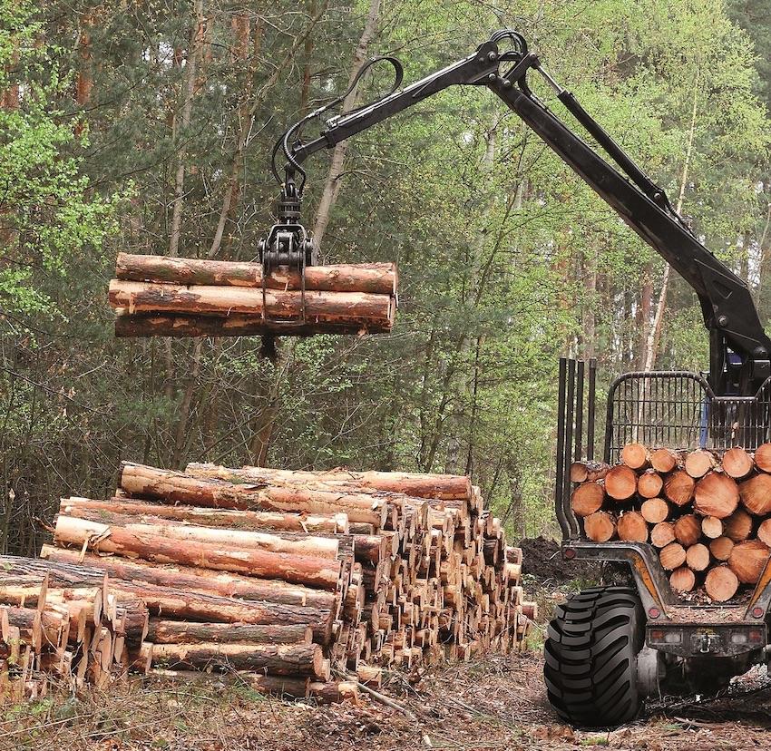 BKT: quattro linee di pneumatici per una silvicoltura sostenibile